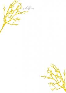 chelsea-gold.jpg